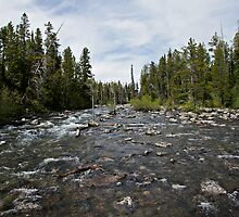 Grand Tetons Stream by Michael Kirsh