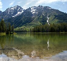 Grand Teton Leigh Lake by Michael Kirsh