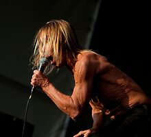 Iggy Pop 2 by lenseeyes