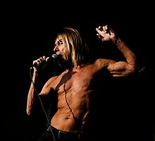 Iggy Pop 8 by lenseeyes