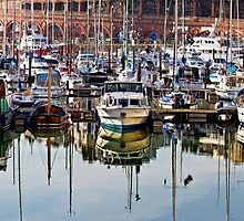 A Crowded Harbour by timpr