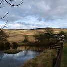 West Yorkshire Landscape by Pawel J
