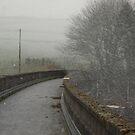Winter in West Yorkshire by Pawel J