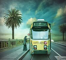 The boarding by Adrian Donoghue