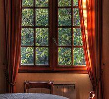 Sunrise in the dining room by Michaela Kopecka