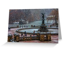 Central Park, The 30 Minute Snow Storm Greeting Card
