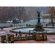 Central Park, The 30 Minute Snow Storm Photographic Print