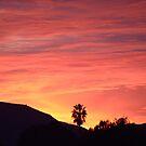 Santee to Sunset by seeya