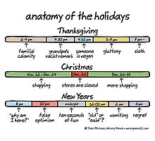 anatomy of the holidays Photographic Print