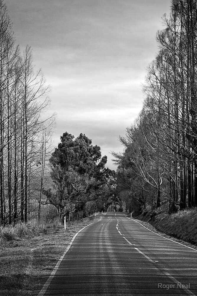 Desolate highway by Roger Neal