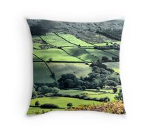 North York Moors Throw Pillow