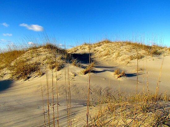 Sand dunes at Cape Hatteras by Alberto  DeJesus