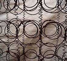Rusty Springs by Mary Ellen Garcia