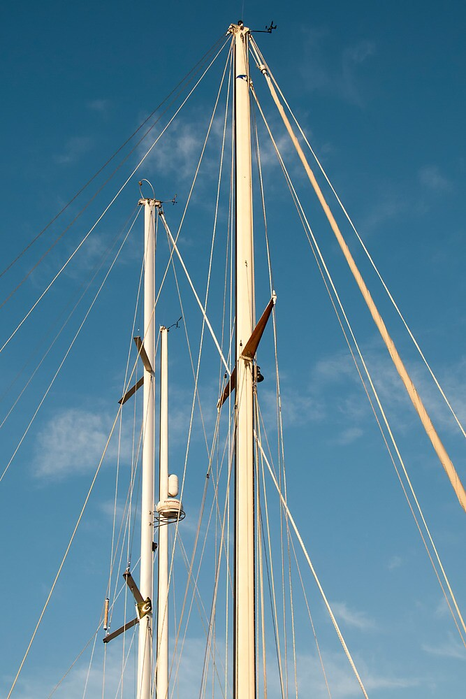 Masts by TeresaB