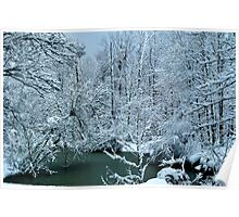 Southern Illinois Winter Scene 2_Dec 2012 Poster