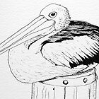 Pelican by mississhippi