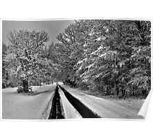 Southern Illinois Winter Scene 7_ Dec 2012 Poster