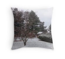 Winter Calm after the storm. Throw Pillow