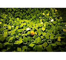 Mini-CREATURES: Lego Photographic Print