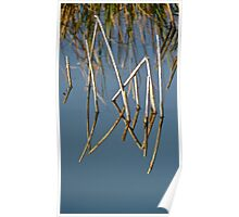 Wetlands - Salisbury, South Australia. Poster