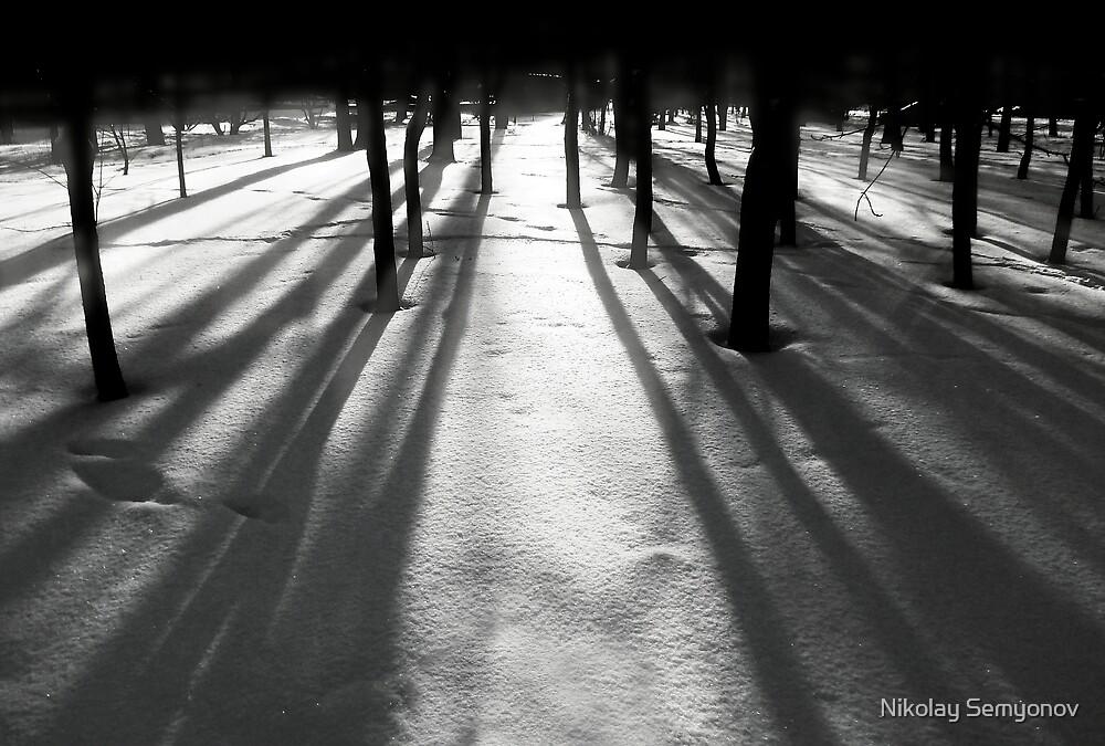 let there be light by Nikolay Semyonov