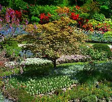 BUTCHART Gardens in Spring  by AnnDixon