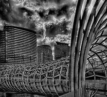 Web Bridge Melbourne by Michael Sanders