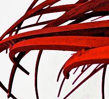 Blooded Blades by Matt Hill