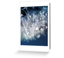 New Year's Blue Champagne  Greeting Card
