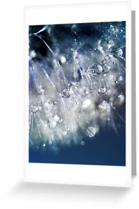 New Year's Blue Champagne  by micklyn