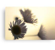 Flower Silhouette Sunset Canvas Print