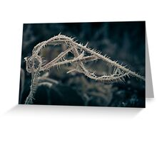 Hoar Frost (Natural Magic) Greeting Card