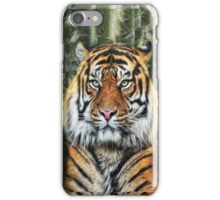 Panthera Tigris II iPhone Case/Skin