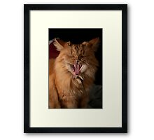 Yawn! I'm tired of modelling! Framed Print