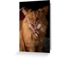 Yawn! I'm tired of modelling! Greeting Card