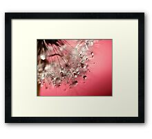 New Year's Pink Champagne - Happy New Year! Framed Print
