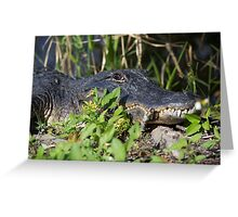 Gator Man  Greeting Card