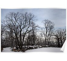 Winter Landscape Poster