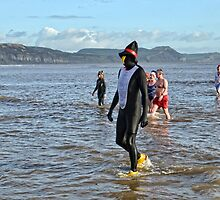 Penguin and Friends At Lyme Lunge, Dorset, UK by lynn carter