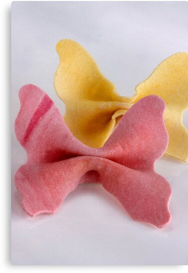 Farfalle Due Colori by SmoothBreeze7