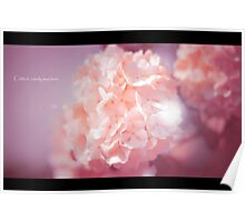 Flower Photography in Pink Poster