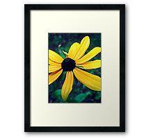 Gore Mountain Flower Framed Print