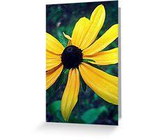 Gore Mountain Flower Greeting Card