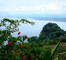 Pacific Coast of Costa Rica by LaurelMuldowney