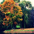 Perfect Autumn Colors by LaurelMuldowney