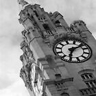 The Liver Building, Liverpool by Colin Shepherd