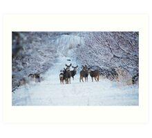 My Deer Family Art Print