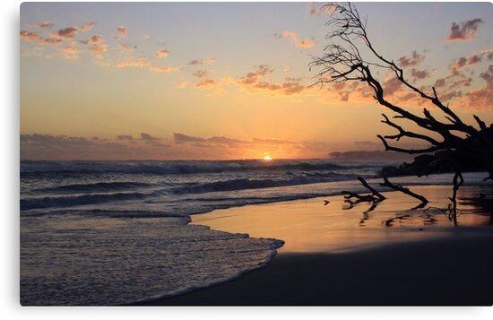 kingscliff beach sunrise ... by gail woodbury