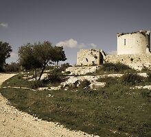 Ruins by georges-henri
