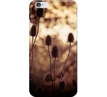 Teasels iPhone Case/Skin
